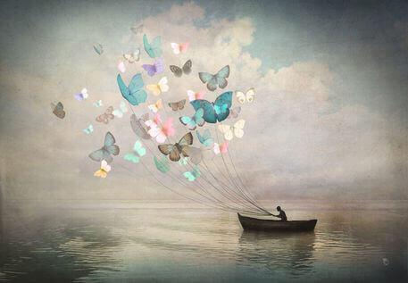 borboletas-guiam-barco