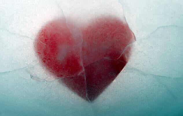 Anestesiar-se diante da dor pressupõe renunciar ao amor