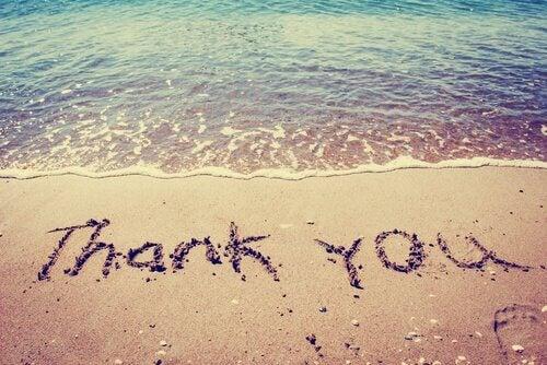gratidão-obrigado