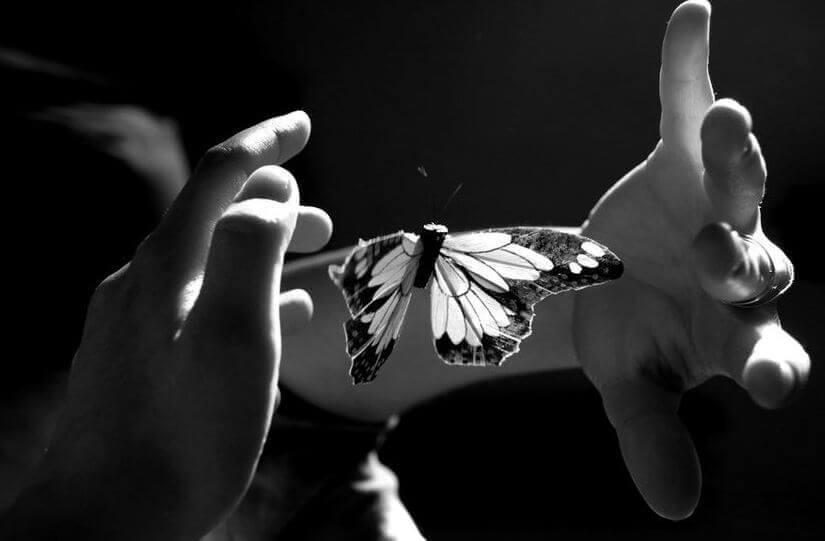 mãos-controlando-borboleta-representando-dor-emocional