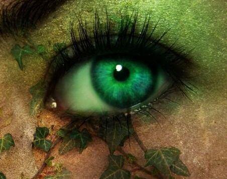 olhos com folhas