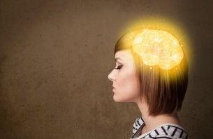 Como o cérebro reconstrói eventos passados