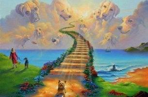 A lenda da Ponte do Arco-íris, o céu dos nossos animais de estimação