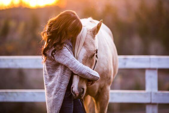 amar-um-animal
