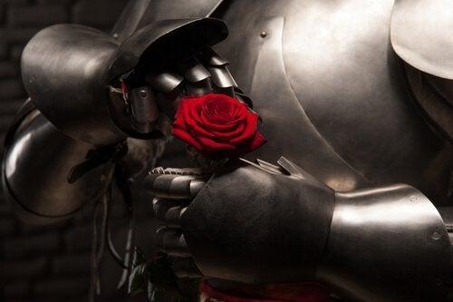 cavaleiro-rosa-hiper-romantismo