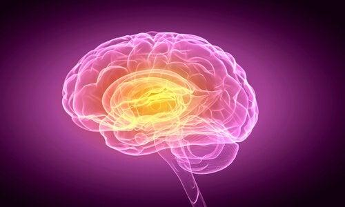 cerebro-pessoas-indecisas