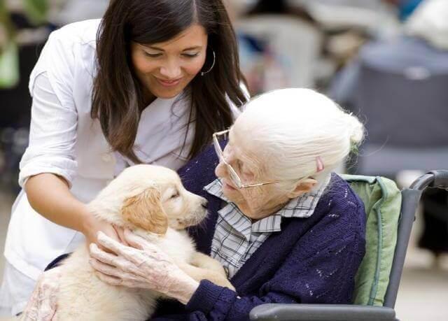 cuidadores-pessoas-dependentes