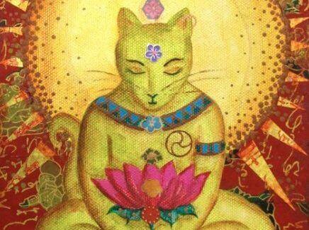 gato-budismo