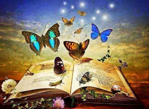 livro-para-crianças-cheio-de-borboletas