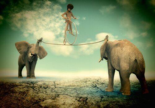 menino-se-equilibrando-entre-elefantes-mostrando-força-de-vontade