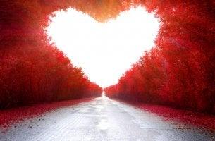Para você, o meu próximo amor