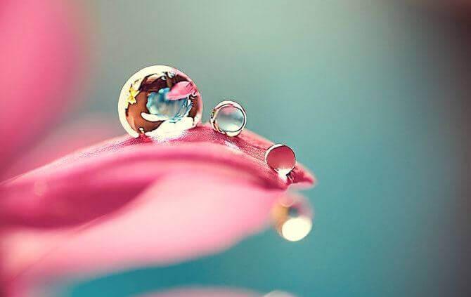 perfeição-e-imperfeição-nas-pequenas-coisas