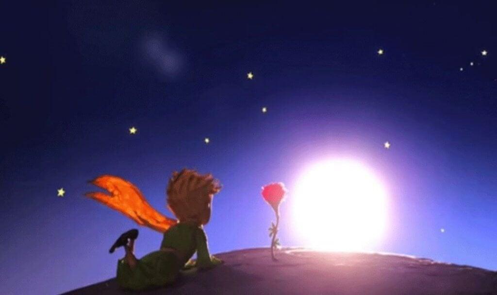 Resultado de imagem para A diferença entre adorar e amar explicada pelo Pequeno Príncipe