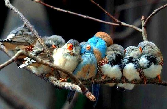 Se A Vida Lhe Dá Pessoas Maravilhosas é Porque Você Merece