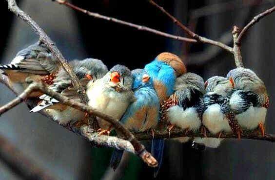 Se a vida lhe dá pessoas maravilhosas, é porque você merece