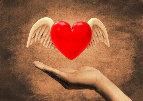 Amores incertos no coração