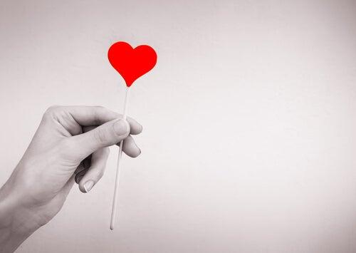 cuidar do seu amor