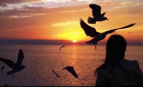 mulher-vendo-por-do-sol