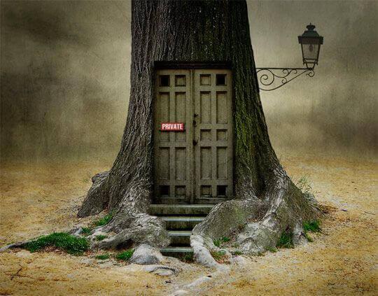 porta-privada