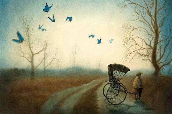 estrada-borboletas