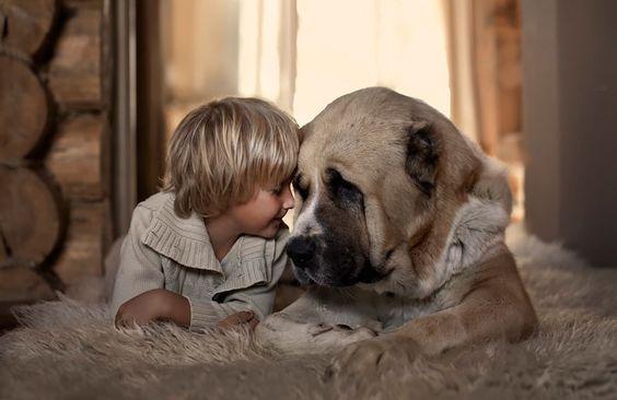 amor-animal-menino-com-cachorro