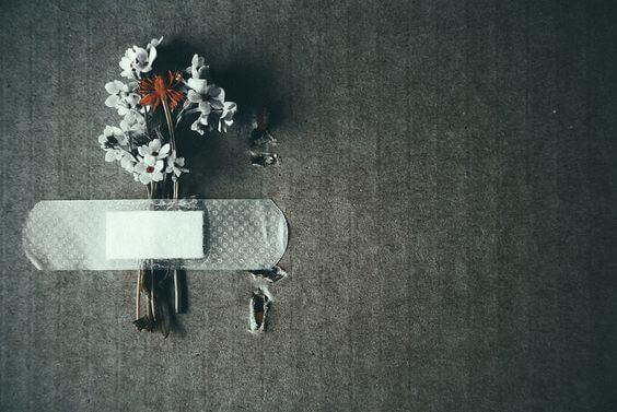 flores-sofrimento
