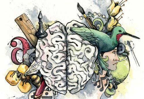 Descubra qual inteligência dominante você tem