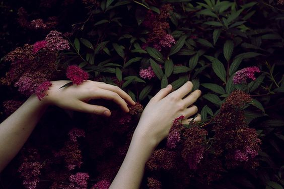 maos-flores