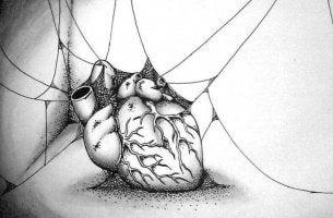 Existem pessoas que têm o seu próprio umbigo em vez de um coração