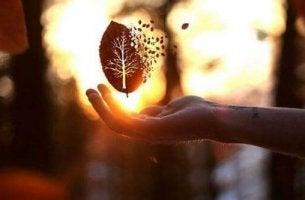 A melhor resposta para a maldade é uma lição de bondade