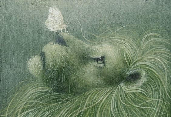 leao-com-borboleta