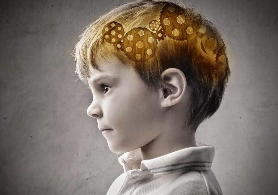 menino-cerebro