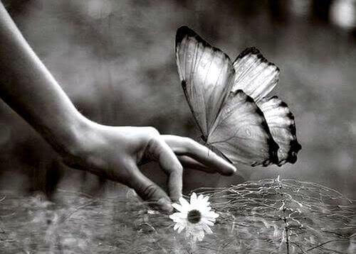 mao-borboleta
