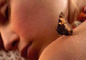 borboleta-pele