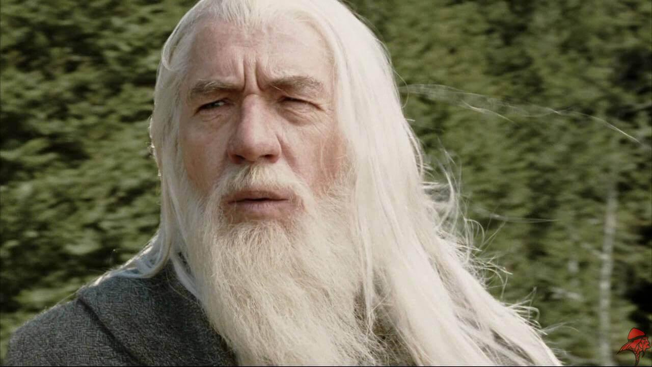 gandalf-barba