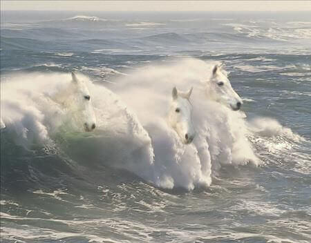 cavalos-ondas