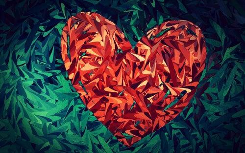 cuidar mais do amor
