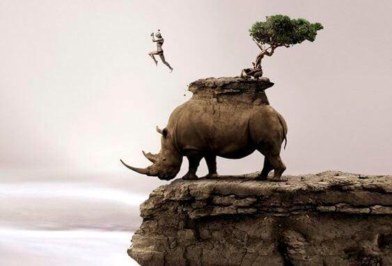 rinoceronte-penhasco