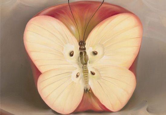 maca-borboleta