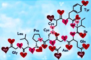Oxitocina: descubra como age o hormônio dos abraços