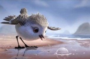 Piper, um dos curtas mais bonitos e cativantes da Disney