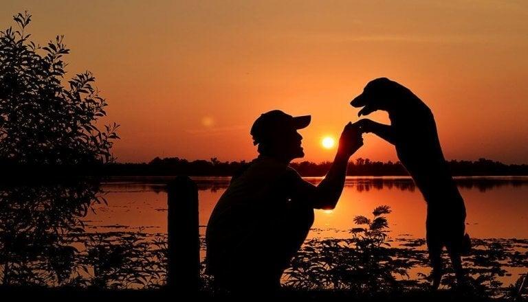 homem-com-seu-cachorro