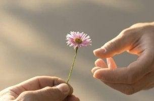 5 demonstrações de maturidade de que o amor precisa