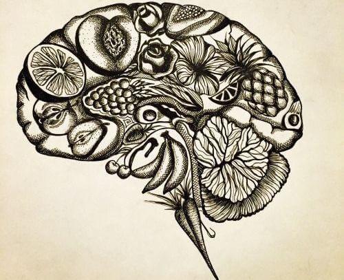 cerebro-flores