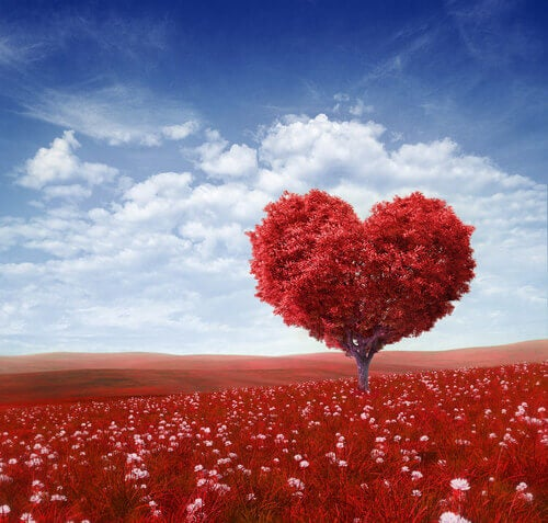 arvore-amor