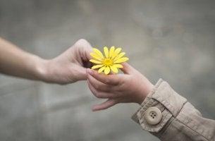 Nunca se arrependa de ser uma boa pessoa