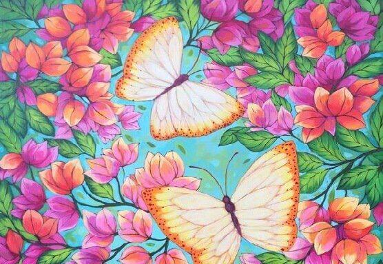 borboletas-flores