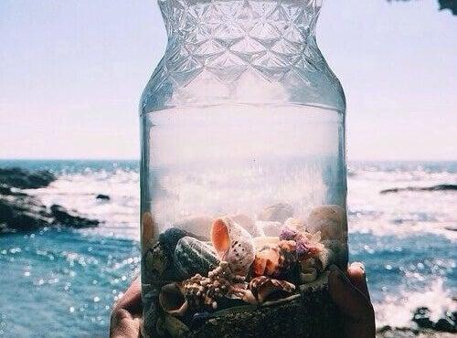 conchas-mar
