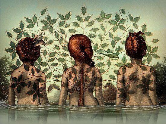 mulheres-rio-folhas