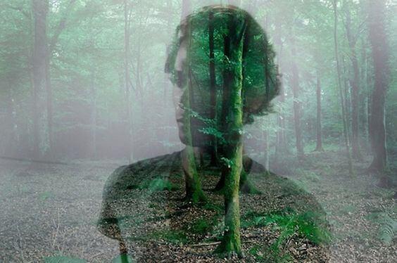 reflexo-homem-floresta